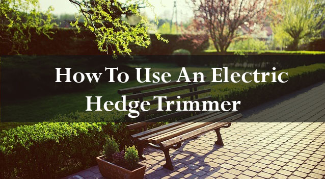 How to use an electric hedge trimmer